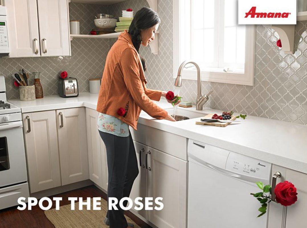 Annie Shu portfolioImage 53328